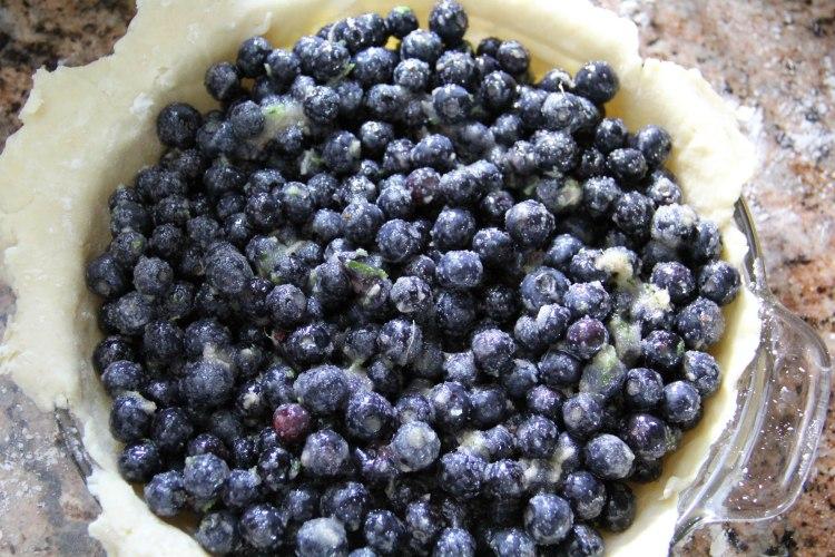 Blueberries in pie