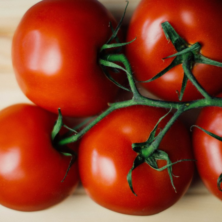 food-tomatoes-vegetable-8390